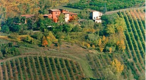 Agriturismo e cantina Corte d'Aibo | Agrifarm with rooms