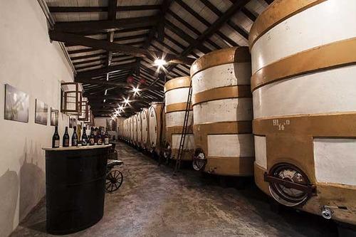 Cantina Paltrinieri | Wine Producers