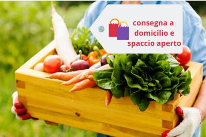Bio Agriturismo Fattoria Centofiori | Agriturismo
